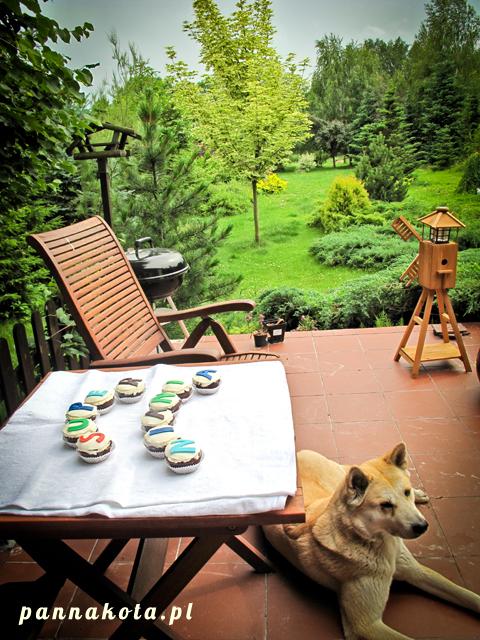 Babeczki dla Super Niani w ogrodzie pilnowane przez Akitę Inu, pannakota.pl