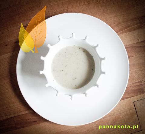 biala-zupa , pannakota.pl
