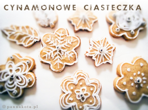 ciasteczka cynamonowe, pannakota.pl