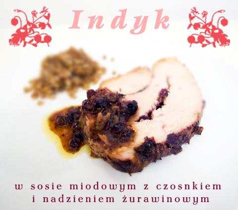 indyk w sosie miodowo czosnkowy, nadziewany żurawiną, pannakota.pl